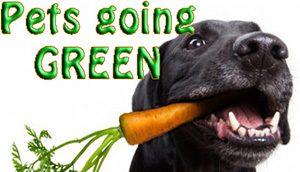 ECO PETS – GO PET GREEN!
